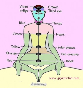 Mindfulness Meditation Research Practices
